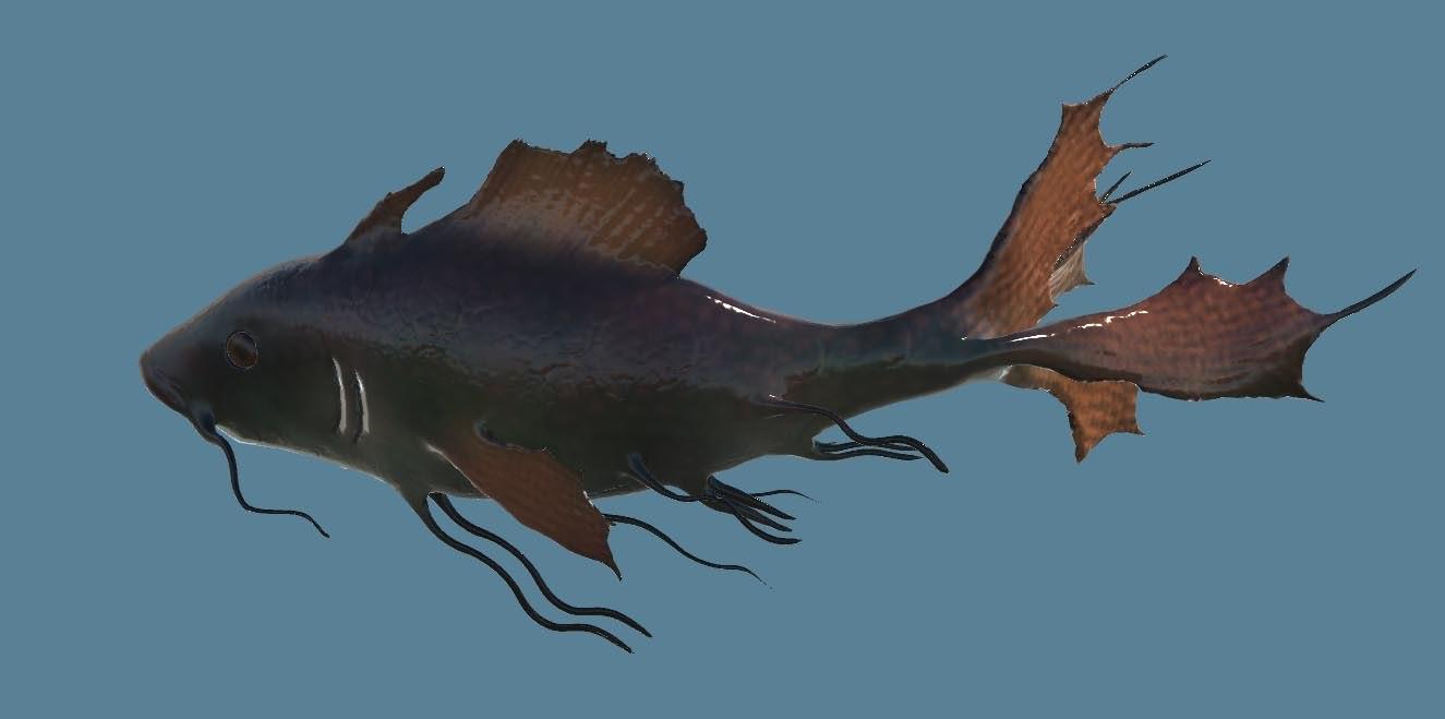 3d tropical fish model