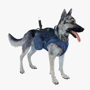 military shepherd dog 3d max