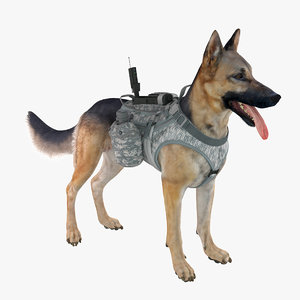 military dog 3 3d max