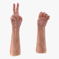 old man hands 2 3d model
