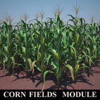 corn field_module