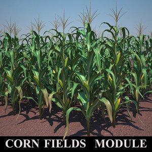 corn field module 3d max