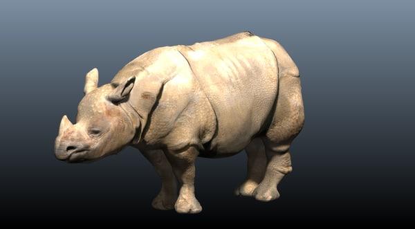 indian rhino obj