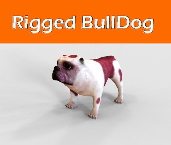 3d model of bulldog rigged