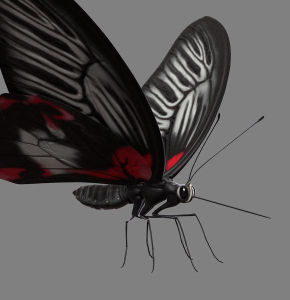 obj butterfly