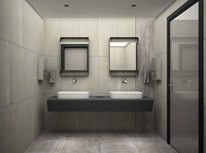 max bathroom restroom scene