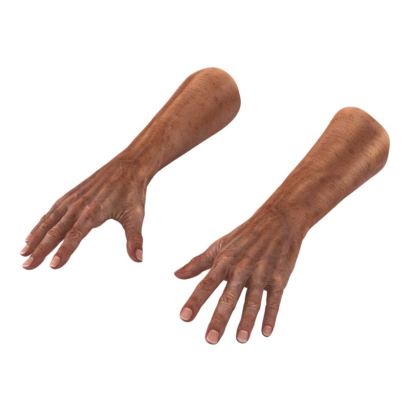 3d old man hands model