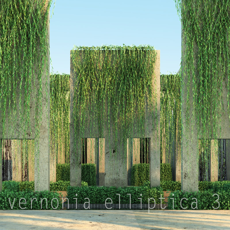 3d model 3 tree