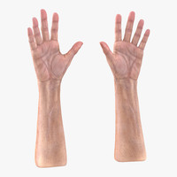 3d model old man hands 3