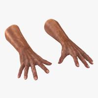 3d model old man hands pose