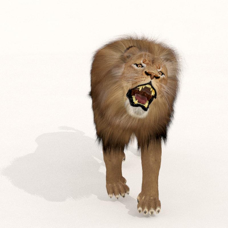 3d zbrush lion fur animals model