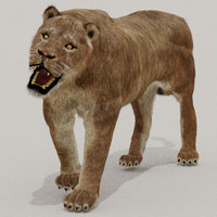 max zbrush lioness fur animals