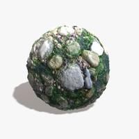 Sea Weed Rocks Texture