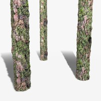 Gnarly Bark Seamless