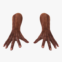 3ds old african man hands
