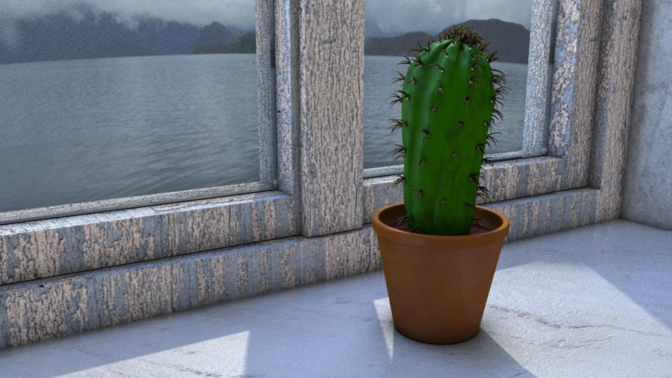 cactus window 3d ma