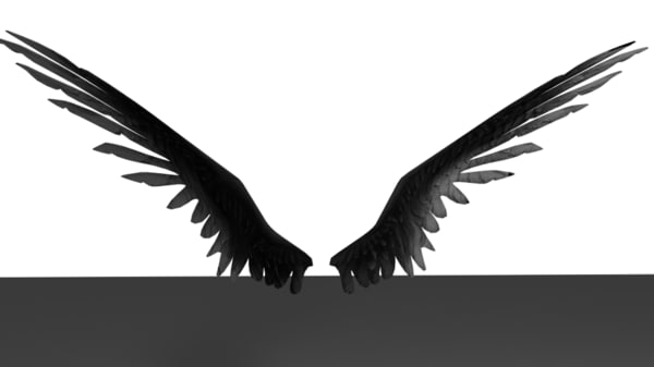 3d walkyrie wing