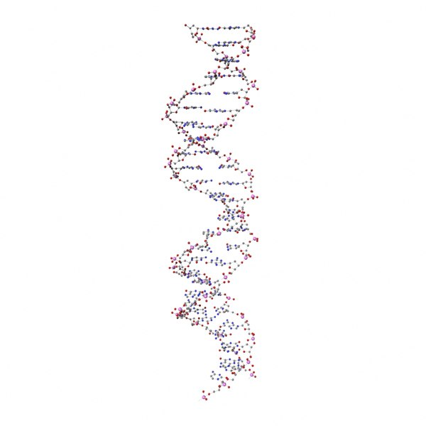 3d model deoxyribonucleic dna