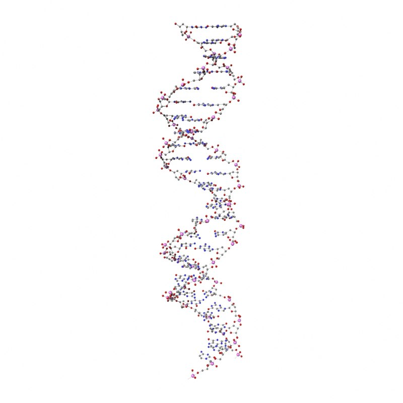 3d model deoxyribonucleic dna