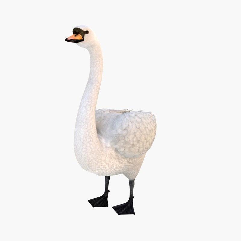 swan 3d max