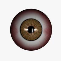 3d model eye ball
