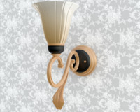 beautiful lamp on wall