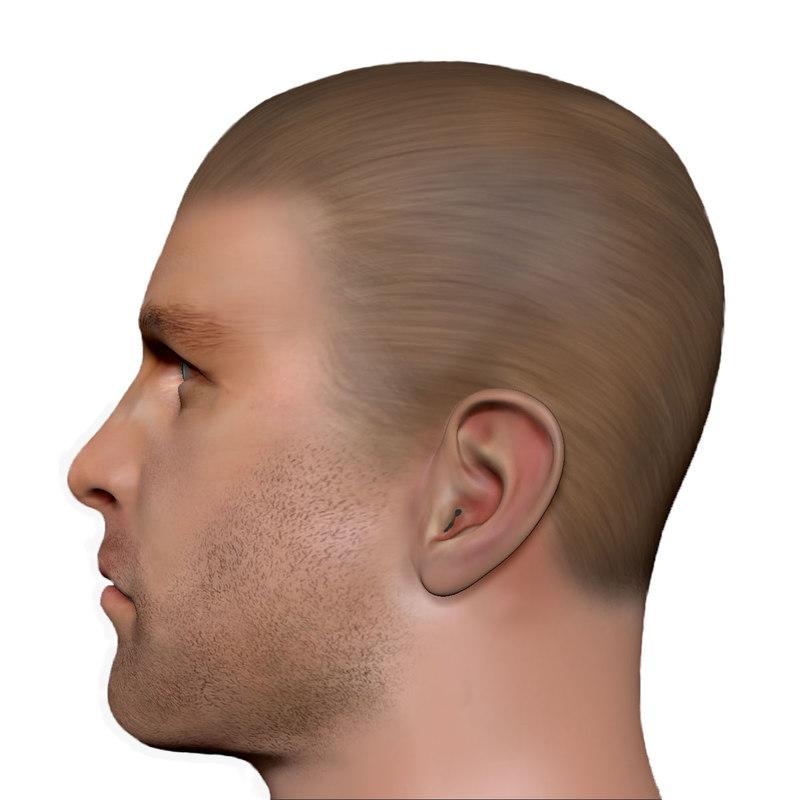3d male head man model