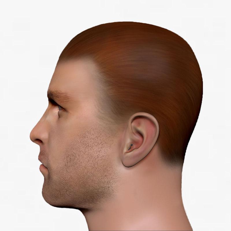 3d male head man