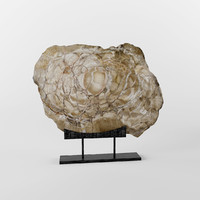 3d petrified figurine