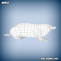 3d model base mesh mole