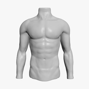 3d model male mannequin torso