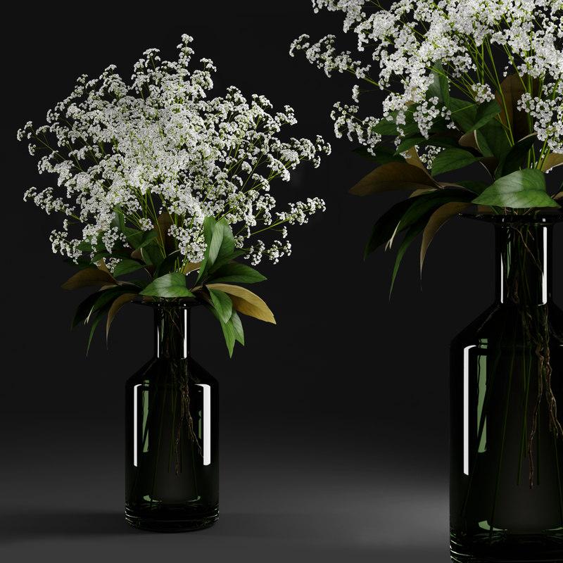 3d gypsophila magnolia flowers plants