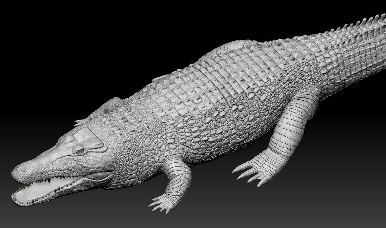 3d realistic crocodile zbrush