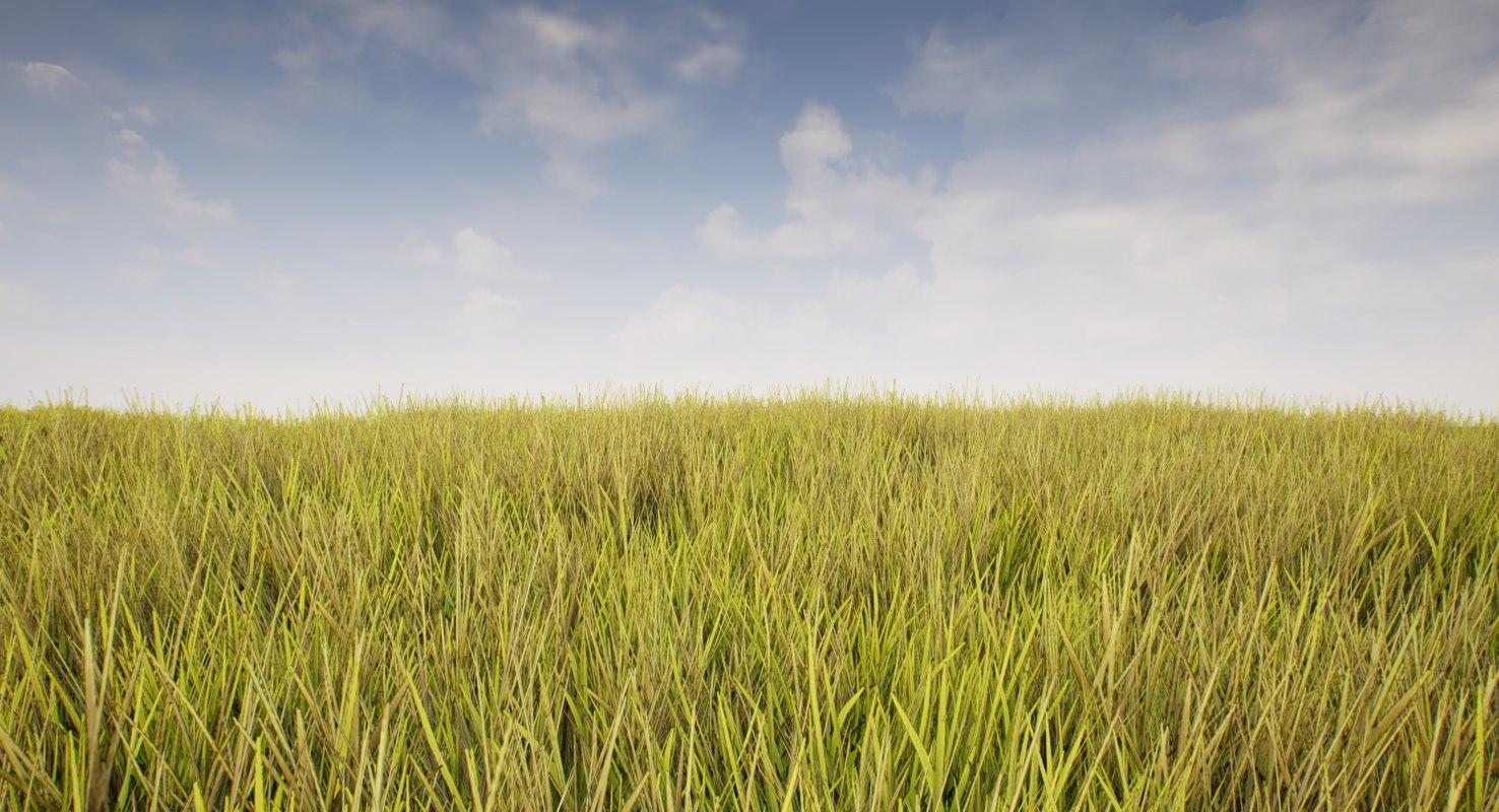 fbx ready grass