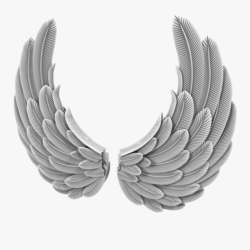3d wings
