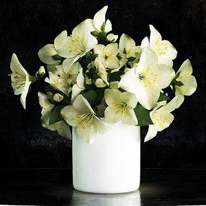 3d jasmine flower vase