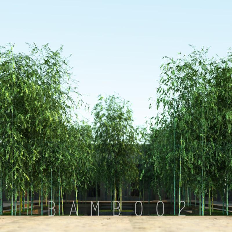 bamboo2_00.jpg