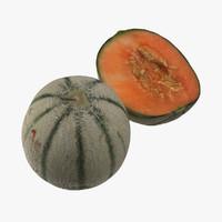 obj photorealistic melon