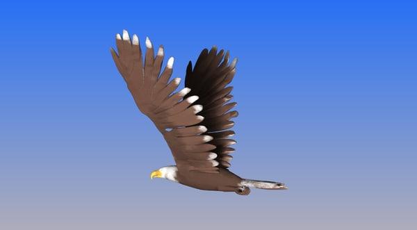 bald eagle obj