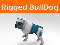 bulldog rigged 3d obj