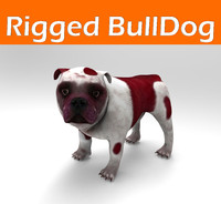 Bulldog Rigged model