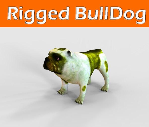bulldog rigged 3d fbx
