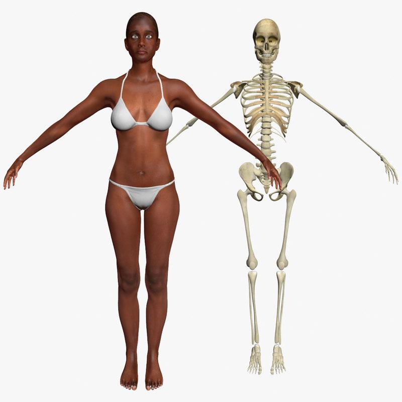 max african american female skeleton