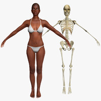 max african american female skeleton