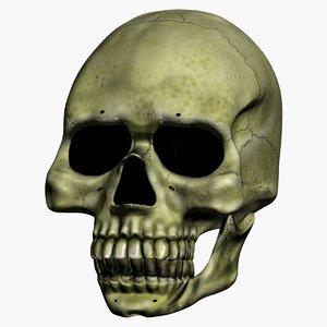 3ds animation skull talk
