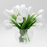 realistic white tulips 3d model