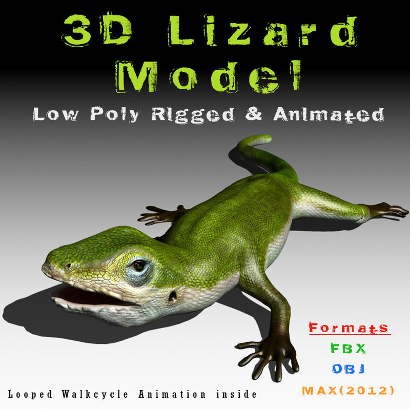 3d model green lizard animation rigged