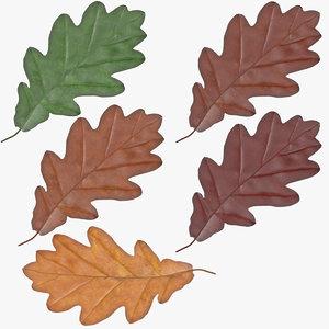 obj oak leaf