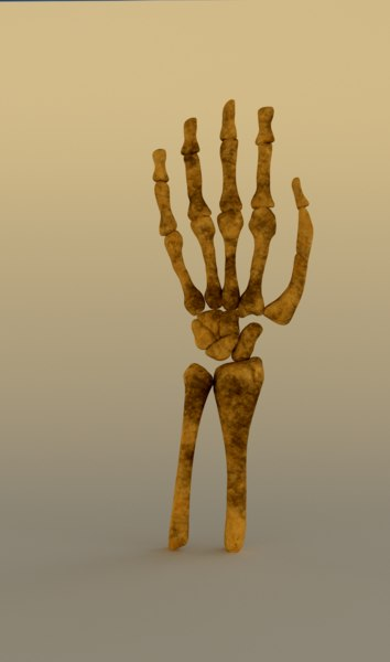 skeleton hand 3d obj