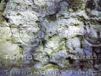 Fairly Mossy Rock Wall